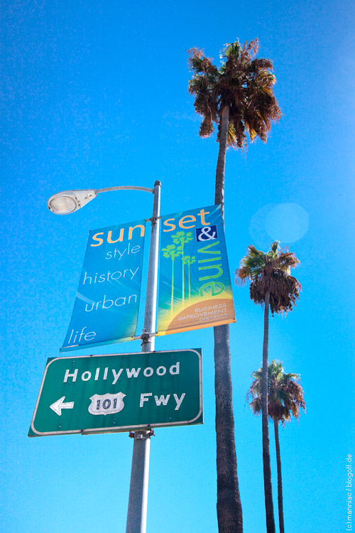 Hollywood Fwy-Schild und Palmen